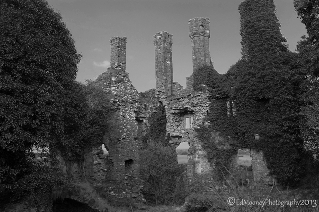 Carbury Castle (12)