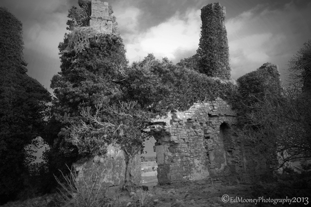 Carbury Castle (14)