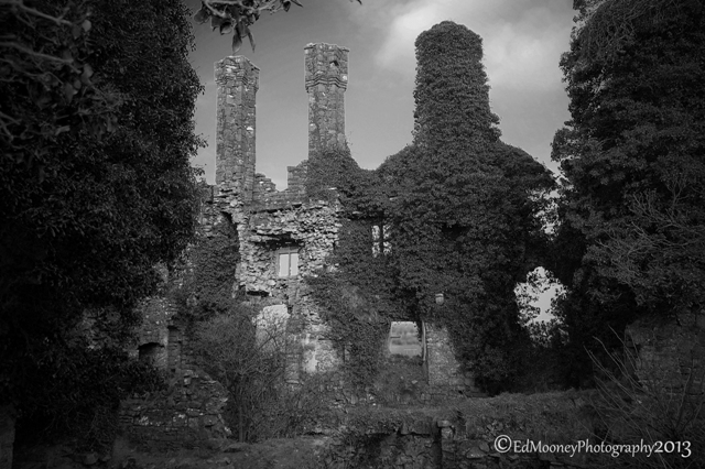 Carbury Castle (15)
