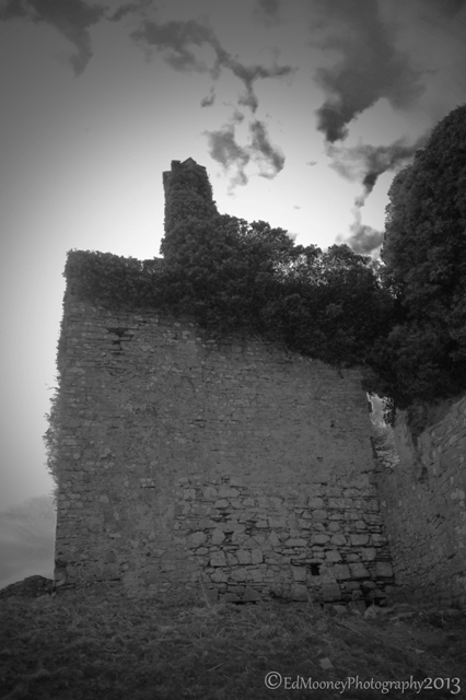Carbury Castle (3)