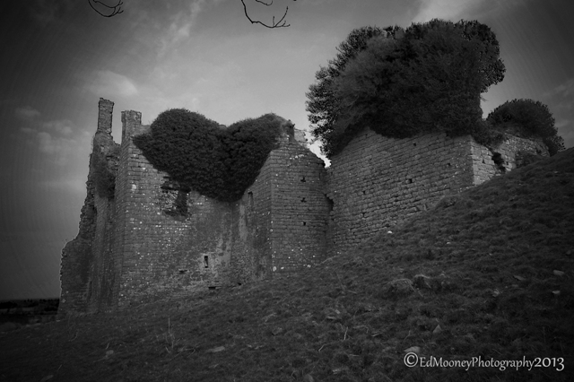 Carbury Castle (6)