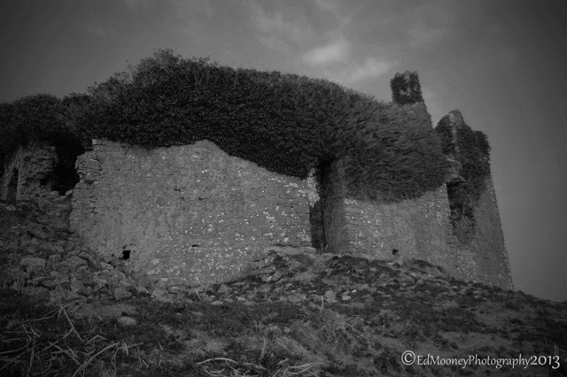 Carbury Castle (8)