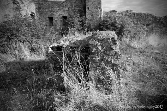 Blundel Castle 5