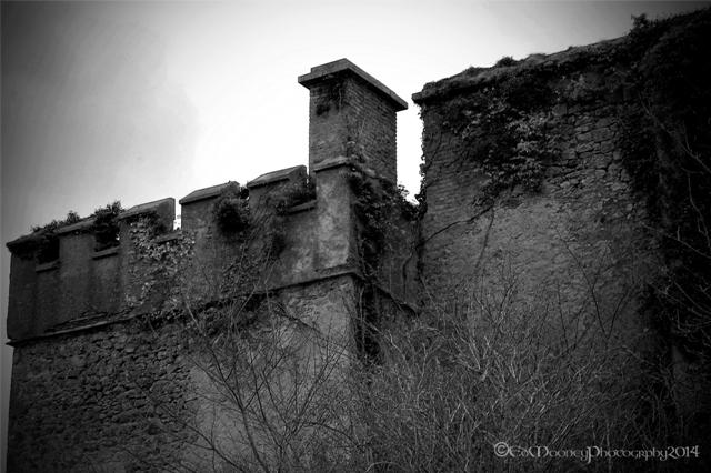 Donadea Castle (12)