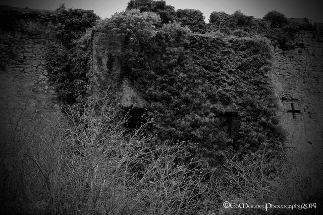 Donadea Castle (14)