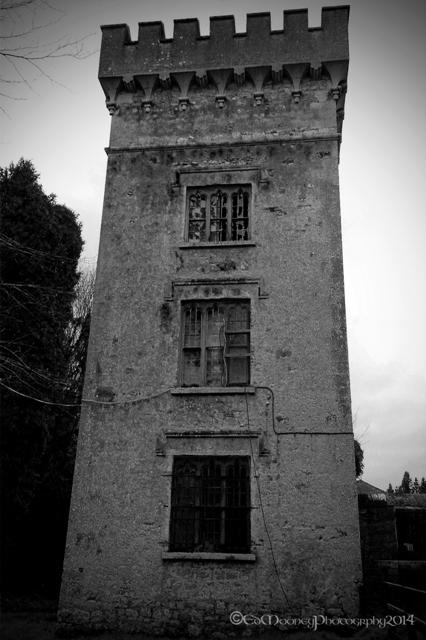 Donadea Castle (20)