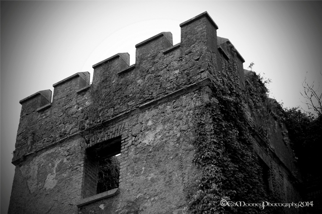 Donadea Castle (4)