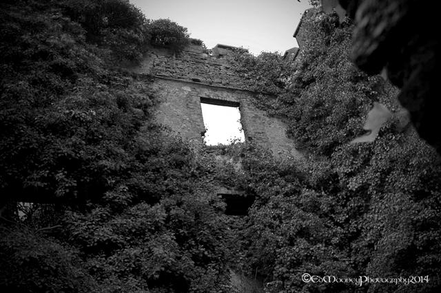 Donadea Castle (9)