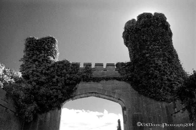 Sidheán Castle (7)
