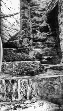Nenagh Castle (8)